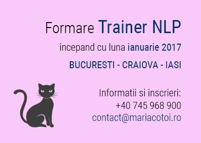Formare Trainer NLP